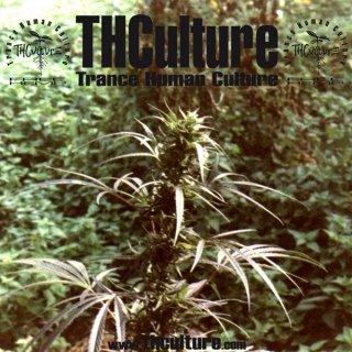 THCulture - Trance Human Culture